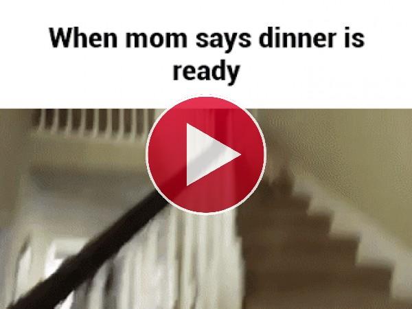 GIF: Cuando te llaman para comer