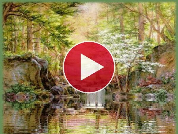 GIF: Bonito río en el bosque