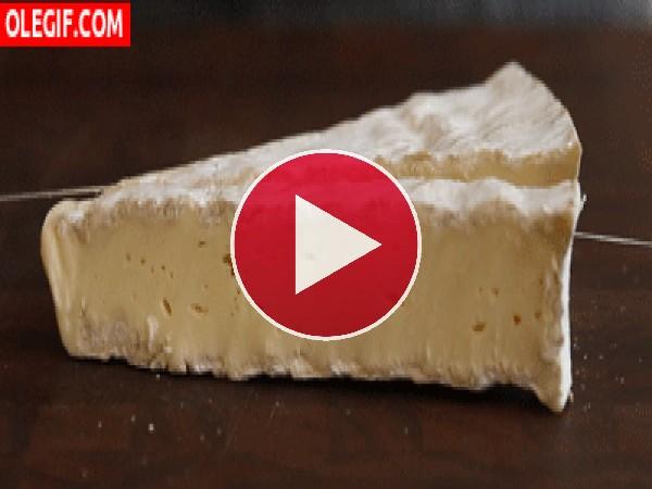 Cortando queso brie