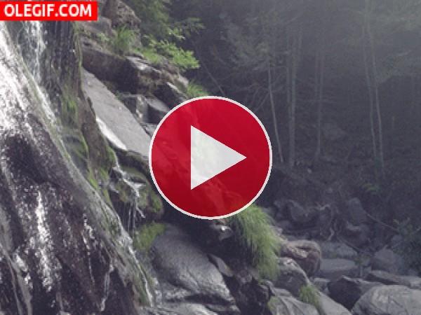GIF: Agua cayendo por las rocas