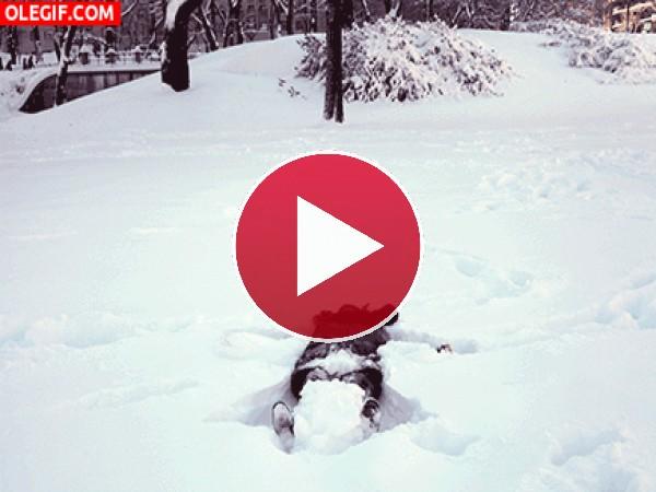 GIF: Haciendo el ángel en la nieve