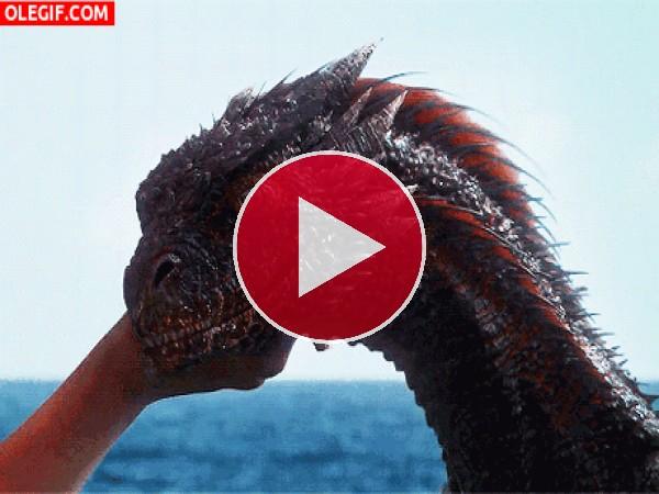 GIF: Este dragón tiene hambre