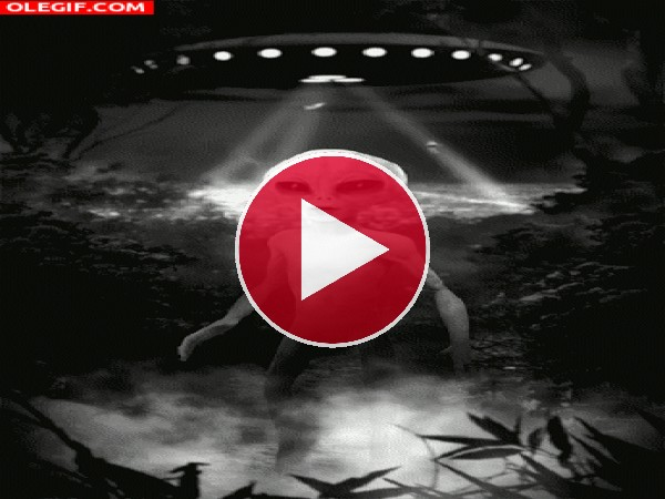 Un alienígena en la tierra