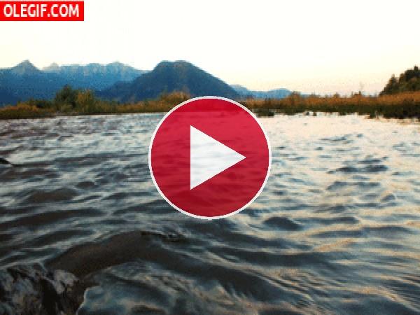 GIF: El agua del lago