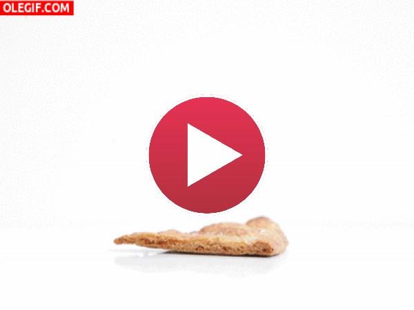 Montando un nacho