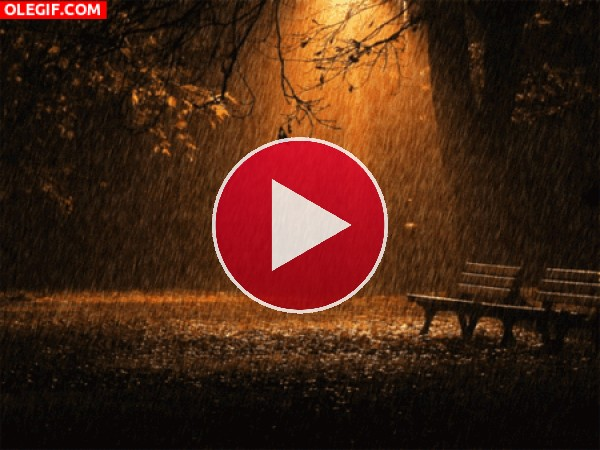 GIF: Llueve en la noche