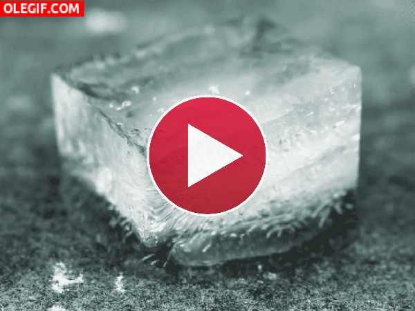 GIF: Cubito de hielo derritiéndose