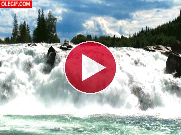 GIF: El cauce de un río bravo