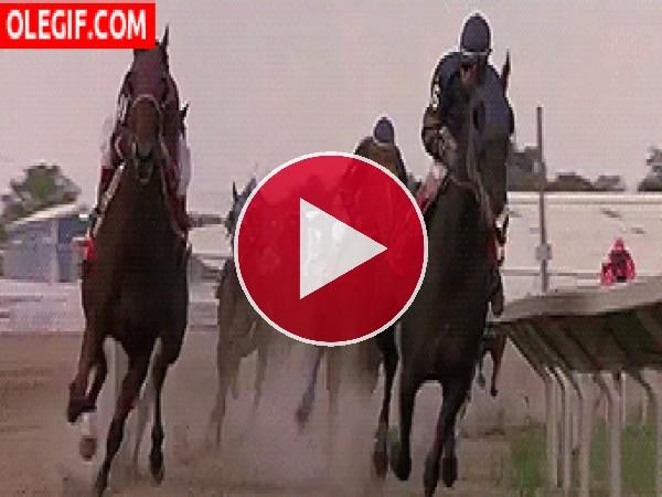 GIF: Carrera de caballos