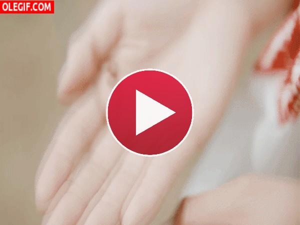 Mariquita en la palma de la mano