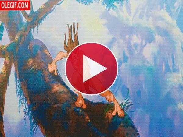 Tarzan corriendo sobre los árboles