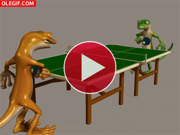 GIF: Una partida de ping-pong