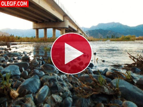 GIF: Río bajo el puente