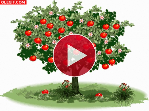 GIF: Manzano brillando en primavera