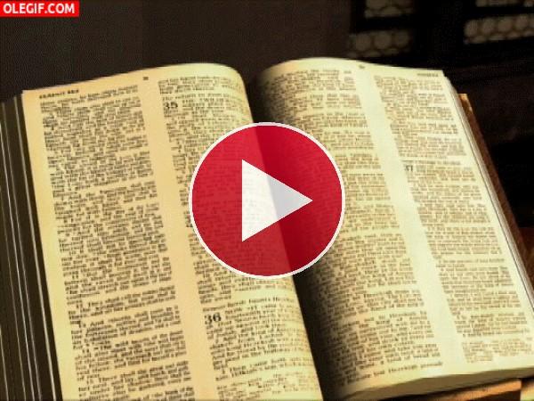GIF: Leyendo la Biblia