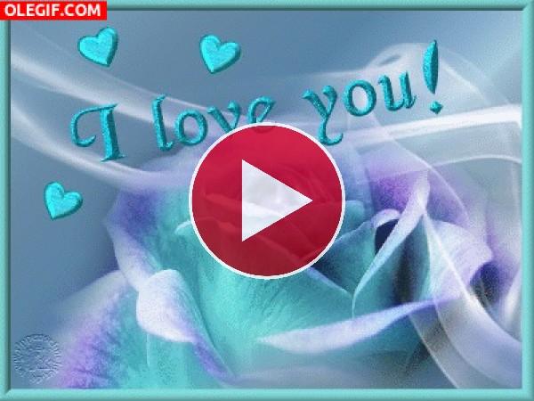 GIF: Te quiero amor