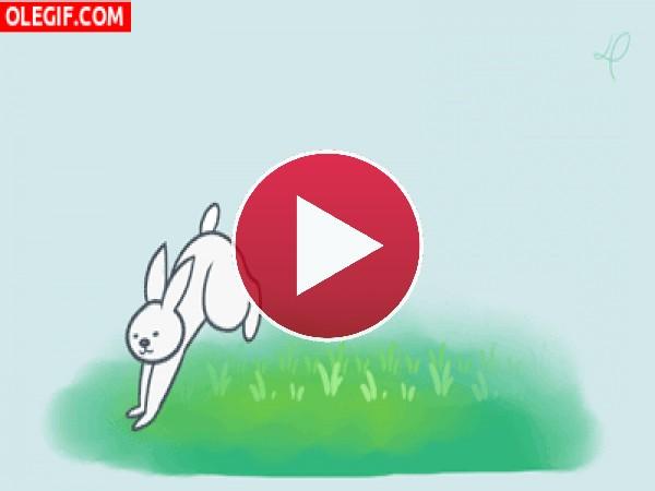 GIF: Conejo dando brincos