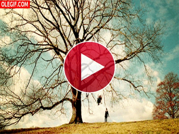 GIF: Columpio en el árbol