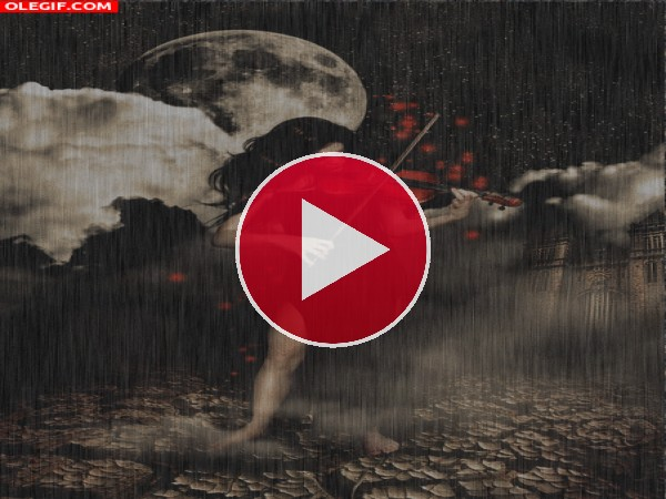 GIF: Violinista bajo la lluvia