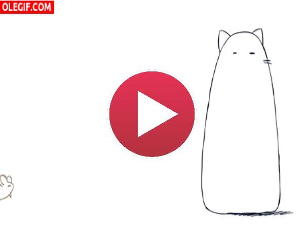 GIF: Ratoncillo molestando al gato