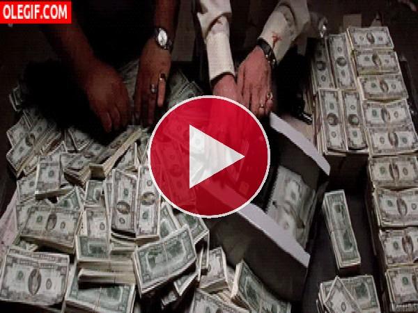 GIF: Contando billetes