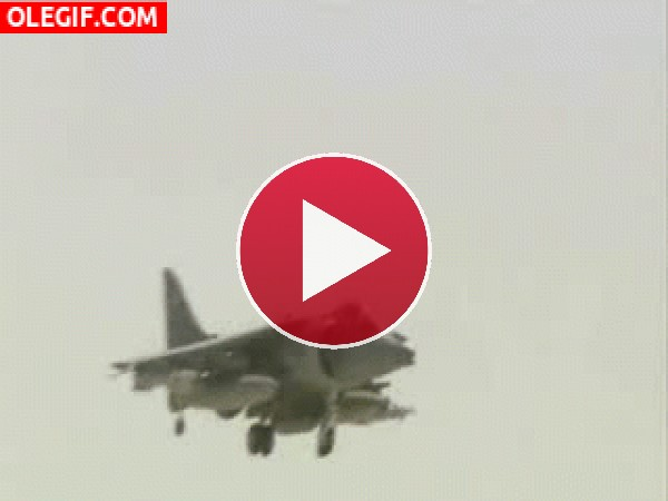 GIF: Harrier estrellándose