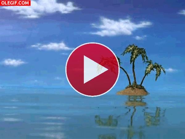 GIF: Palmeras en una pequeña isla