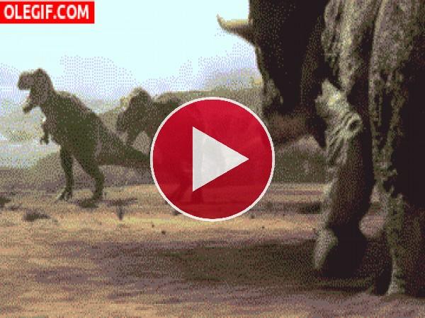 GIF: Estos dinosaurios están muy cabreados