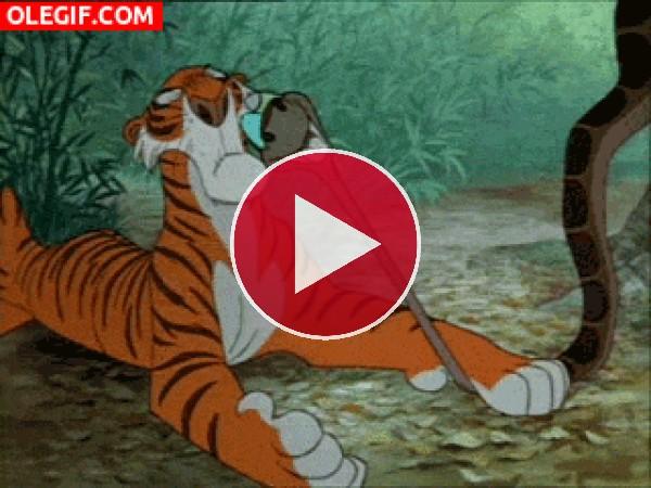 Shere Khan aplastando a Kaa