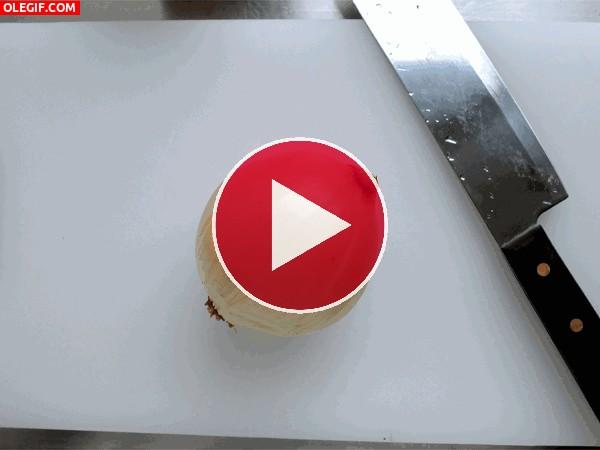 GIF: Picando una cebolla