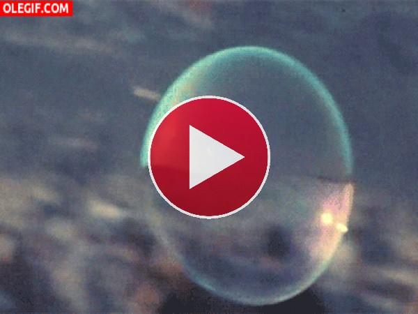 GIF: Pompa de jabón volando