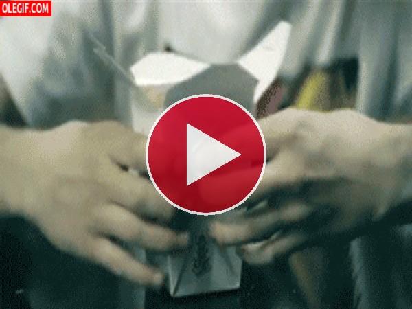 GIF: Abriendo una caja de comida china