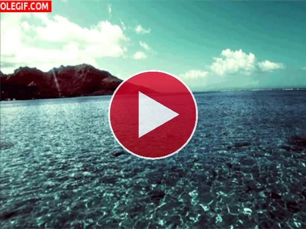 GIF: Navegando hacia la isla