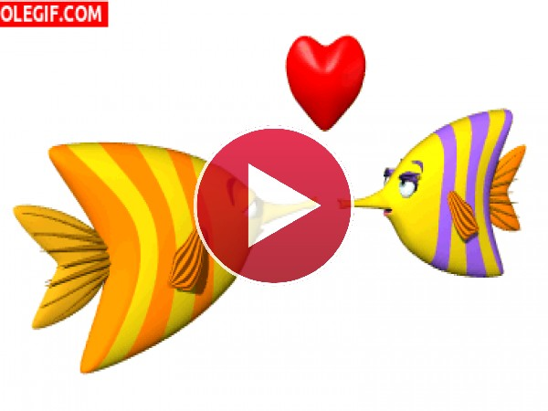 GIF: Viva el amor