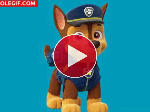 GIF: Personajes del la Patrulla Canina