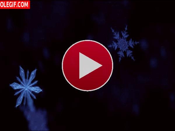 Cristales de nieve flotando