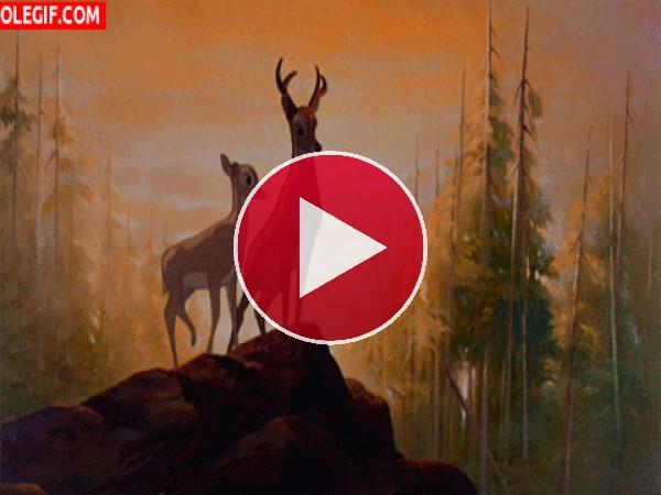 Hermosa escena de Bambi
