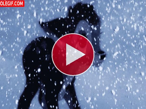 Bambi llorando bajo la nieve
