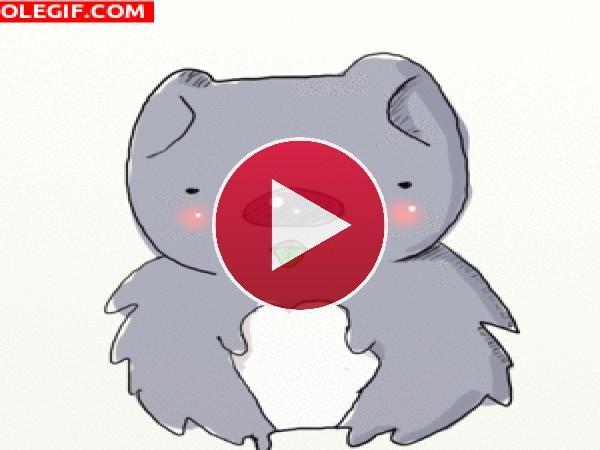 GIF: Un koala comilón