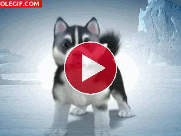 GIF: Un lindo cachorro