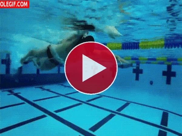 GIF: Hombre nadando en la piscina