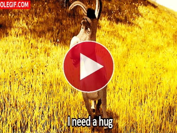 GIF: Necesito un abrazo