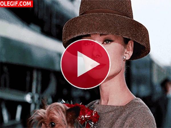 GIF: La elegancia de Audrey Hepburn