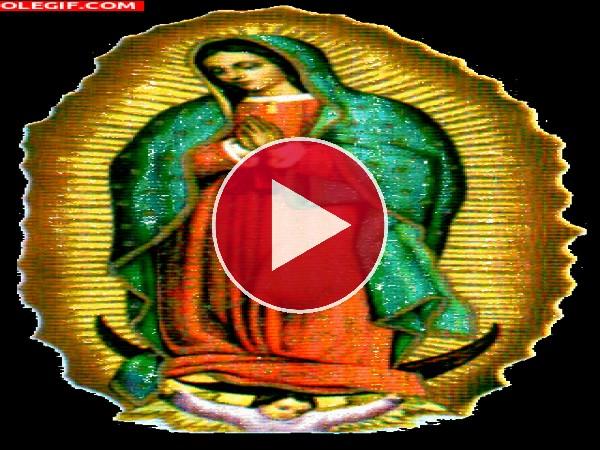 GIF: La Virgen Maria