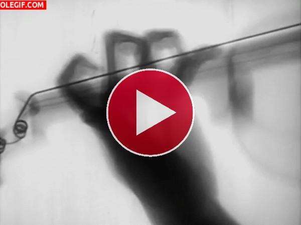 GIF: La mano del violinista