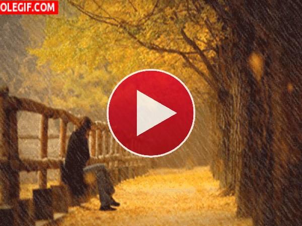 GIF: Bajo la lluvia de otoño