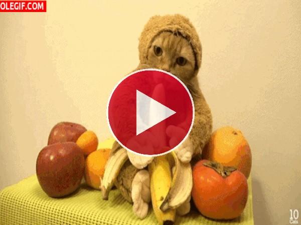 GIF: Me gustan mucho los plátanos