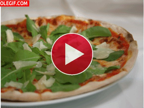GIF: Pizzas de varios sabores