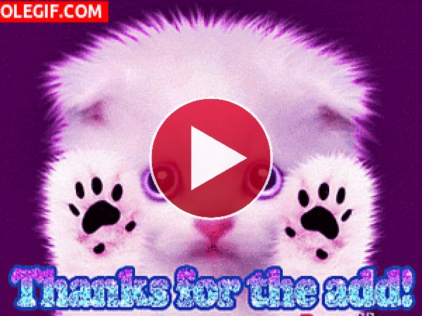 GIF: ¡Gracias!