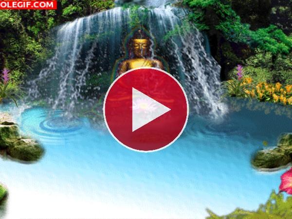 GIF: Jardín de meditación
